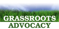 THE RISE OF CORPORATE GRASSROOTSLOBBYING