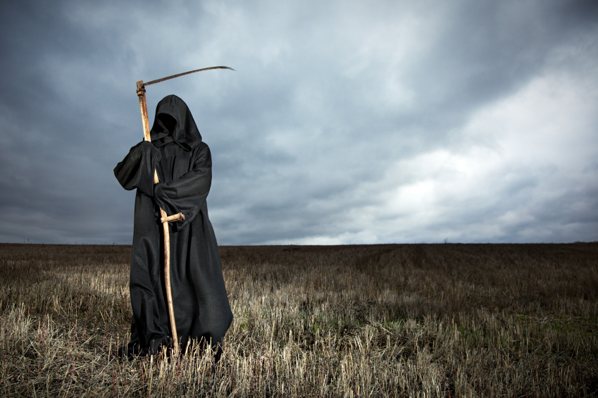 Grim Reaper Standing in the Meadow